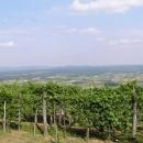 Bela krajina - oblast vína a dobrých lidí