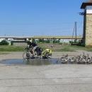 Cyklotoulky s vozíkem a dětmi po Rumunsku