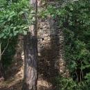 Na hradu Kozí hřbet