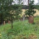 Židovský hřbitov u Čeliny