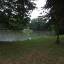 Rybníky zámeckého parku