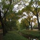 Letní zelenou již začíná střídat podzimní žlutá