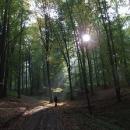 V lesích pod Šemberem
