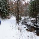 Údolím Černovického potoka stoupáme na Suchák. Pavel už tam nechtěl, ale byl přehlasován.