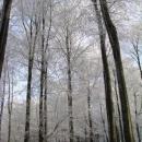 Zima jako v pohádce