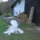 O čtyři dny později už nebylo po sněhu skoro ani památky a jaro si jelo dál ve svých kolejích...