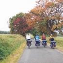 Podzimní romantika ve Slavkovském lese