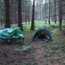 Znavené údy skládáme opět do hloubi lesa