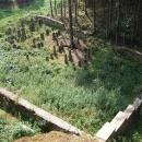 Ale při hledání zbytků hradu Boršengrýna se v lesíku z ničeho nic objevil osamělý židovský hřbitov