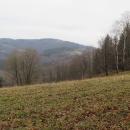 Velká Čantoryje, 995 metrů, je nejvyšší vrchol pohraničního hřebene Slezských Beskyd.