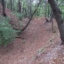 Hradní příkop Kysackého hradu