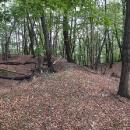 Příkopy na Kysackém hradu