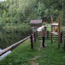 U vodní nádržky Hrončok na Kamenistém potoku