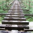 Bývalá lesní železnice u Č. Balogu
