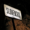 kdo by se nenachytal? - slovinština