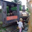 Vystavena je tu i parní mašinka z nějaké lesní úzkokolejky