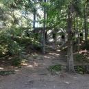 Nachází řadu objektů ukrytých v lese ...