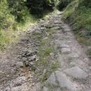 Cyklotrasy Broumovska jsou teda hodně MTB :-(
