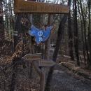 V lesích ukrytá osada Proudy, proudy už tu ale dávno neproudí