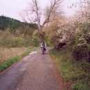 Cesta v údolí Střely poblíž Rabštejna