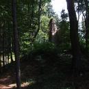 Tvrz Melechov ukrytá v lesích