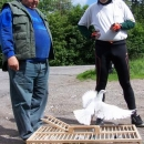 Bavíme se s pánem, který tady trénuje holuby - za půl hodiny budou doma v Litovli