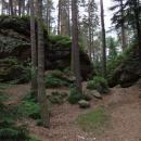 V borovém lese mezi skalami