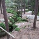Toulovcovy maštale v nitru skal a borůvkový ráj nad nimi