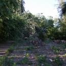 Zámecký park hodně poškodila bouřka