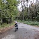 Lesní cyklostezka Týniště-Třebechovice, souběžná s hlavním tahem č.11, je výborná alternativa i pro dálkovou výpravu