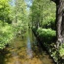 Zlatá stoka - uměle zbudovaný kanál napájející třeboňské rybníky