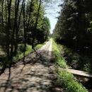 Stezky okolo Třeboně