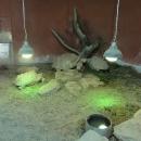Želvičky :-)