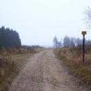 Na hřebeni u Kozlovského vrchu