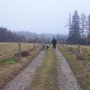 Na cyklostezce mezi pastvinami