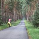 Hodonín opouštíme nádhernými borovými lesy