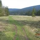 V Juráňovej dolině je louka celá zničená od divokých prasat