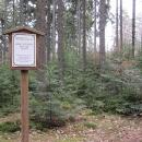 Učenci zde zkoušejí výběrové mýcení lesa
