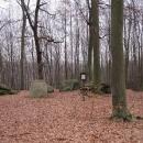 U pamětní desky J.Sigmonda, dalšího profesora pěstování lesů