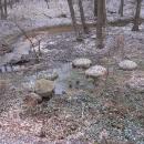 Mlecí kameny u Zvánovického potoka