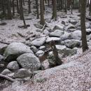 Zvánovický potok je posetý balvany