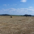 Podorlická krajina - vlevo na kopci Homol, napravo Dřel