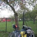 Jedna cyklistická podzimní... Mimochodem, to Follow me táhne Luděk naprosto zbytečně. Jednak to děcka ujely celý, jednak Šárka kdesi vytrousila úchytku z předního  kola, takže to celé ujet prostě musela. A Víťa už na připojení nemá nárok ;-)