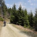 Cyklotrasy Rychlebských hor