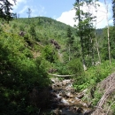 Podél Prudkého potoka je to tedy divočina