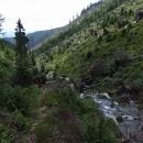 Podél Prudkého potoka je stoupání opravdu prudké