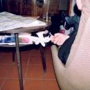 Po té, co jsme ho z klína odehnali, se nám schoval do stolku :-)