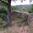Z hradu Komberk toho moc nezbylo