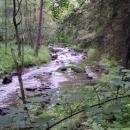 Přírodní park Kosový potok