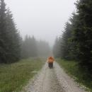 Rychlebské cesty mají i v dešti svoje kouzlo, ale nemělo už dneska být hezky?!